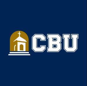 CBU-Online Ph.D. Public Administration
