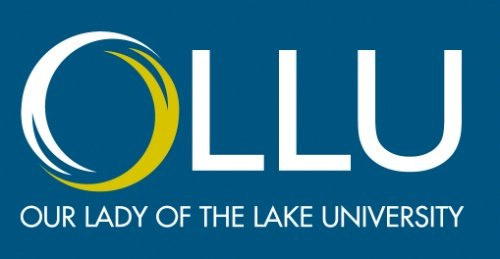 Our Lady of the Lake University - Top 25 Accelerated Online Master's in Management Information Systems