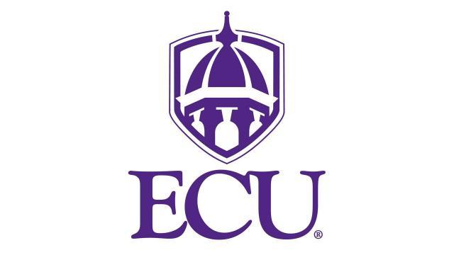 East Carolina University - Top 20 Online PhD Management Information Systems