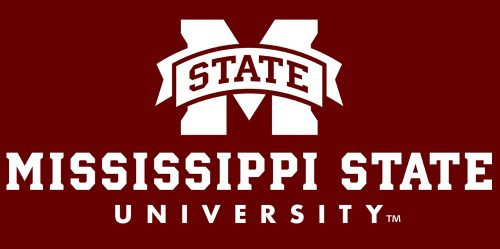 Mississippi State's Online PhD in Computer Science