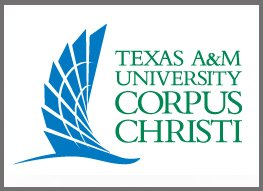 The logo for Texas A&M University colleges beach