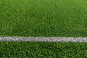 An image to go with our article on turf management options