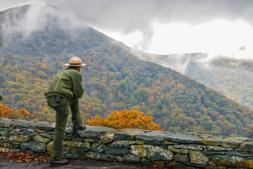 An image of a park ranger which is accompanying our article on best bachelor's degrees in parks, recreation, and leisure