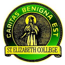 Logo for Saint Elizabeth College of Nursing a catholic college in new york