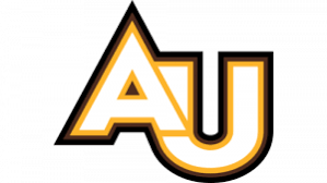 Top 20 Bands Formed in College - Adelphi University